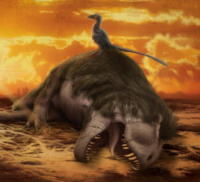 Extinctions02