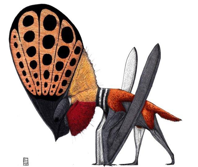 tupandactylus - anche questa a caso o in alternativa a deinonychus
